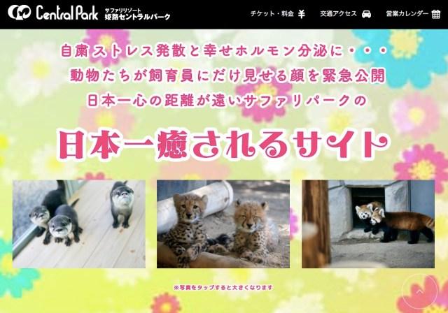 姫路セントラルパークが公開する「日本一癒やされるサイト」がマジで癒やされる~! 飼育員のコメントもジワジワ度高めです