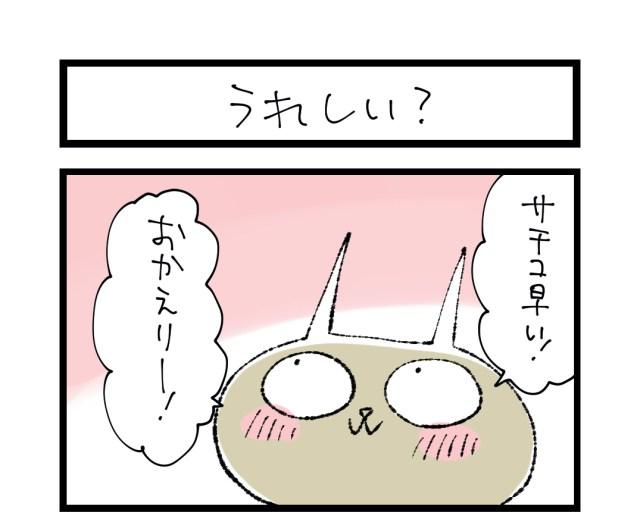 【夜の4コマ部屋】うれしい? / サチコと神ねこ様 第1336回 / wako先生