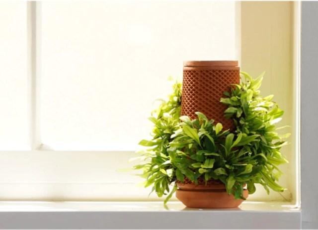 土のいらないプランターが画期的! 水を入れると自然としみ出し植物がスクスク育ちます