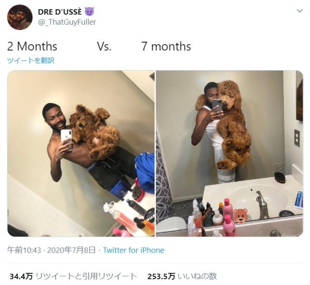 愛犬の成長ビフォーアフター写真にビックリ! たった5カ月でめちゃくちゃ育ってます