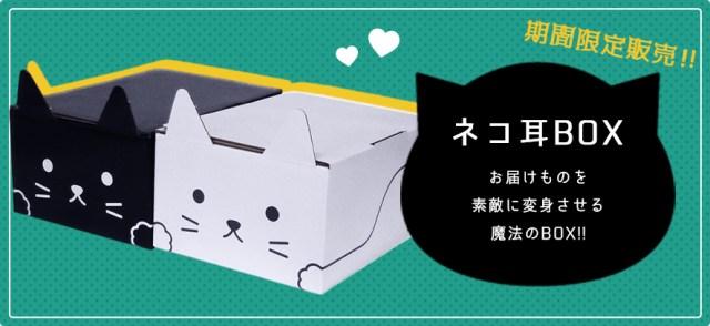 クロネコヤマトの「ネコ耳BOX」がかわいい~! 黒ネコはもちろん白ネコバージョンもあるよ