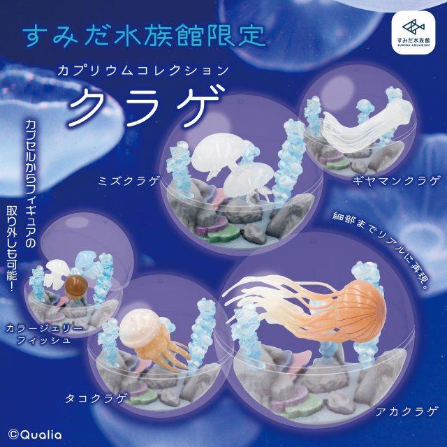 すみだ・京都水族館限定「超絶リアルクラゲ」ガチャが登場! カプセルを水槽に見立てていて自分好みにカスタムできるよ