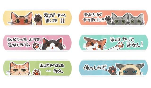 猫傷専用ばんそうこう「にゃんそうこう」がカワイイ! ニャンコが「私がやりました」と自己申告するイラストにキュン♡