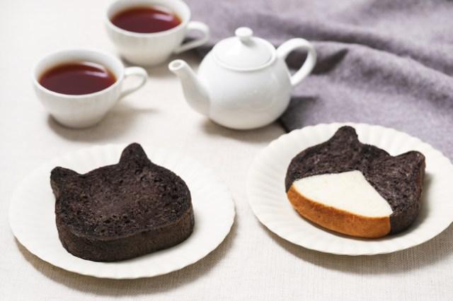 【期間限定】人気の「ねこねこ食パン」に黒猫とハチワレが登場! 藤あや子さんの愛猫マルとオレオがモデルだよ〜