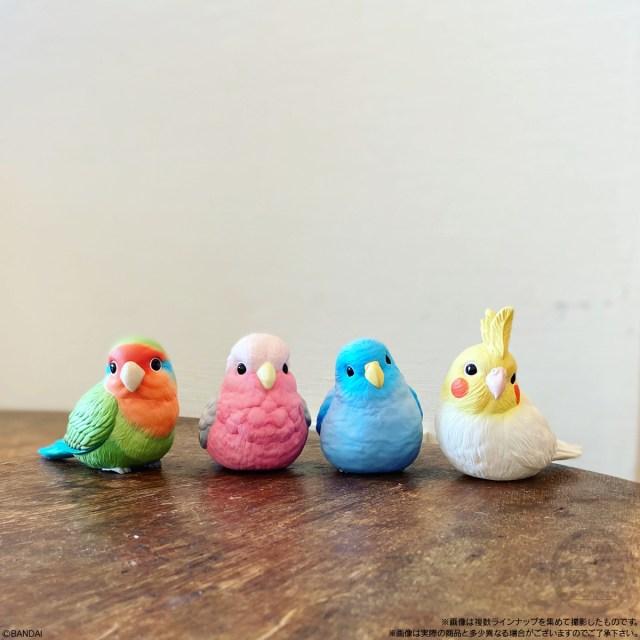小鳥を飼っている気分を味わえる! 手のひらサイズのフィギュア「てのりフレンズ」がリアルでかわいい