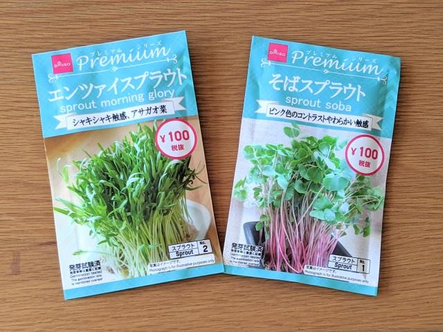 【実録】ダイソーで「水だけで育てられる野菜の種」を見つけたので育ててみた! 初めての家庭菜園にも◎