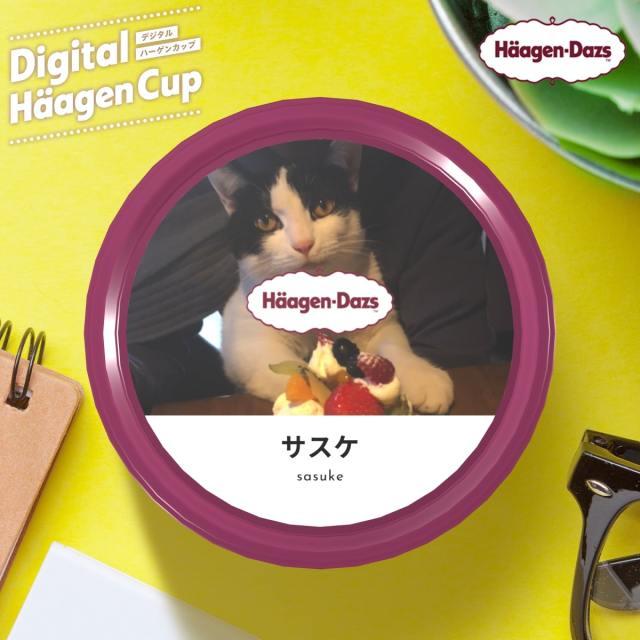 オリジナルデザインの「ハーゲンダッツ」が作れるサイトが超楽しい! 思い出の写真や推しの画像をパッケージにできるよ~!