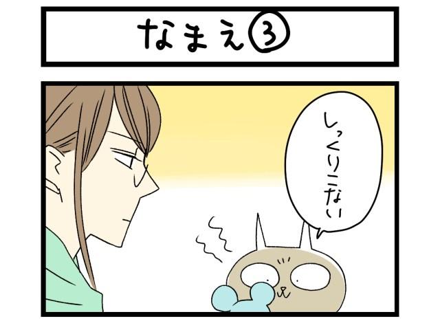 【夜の4コマ部屋】なまえ (3) / サチコと神ねこ様 第1461回 / wako先生