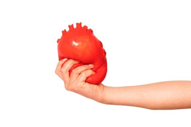 フライング タイガー コペンハーゲンに「心臓」が売っておる…!! ハートを伝えたいならいっそ「心臓」を贈っとく?