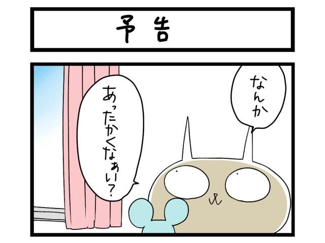 【夜の4コマ部屋】予告 / サチコと神ねこ様 第1482回 / wako先生