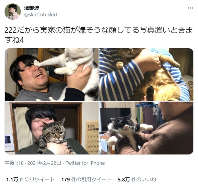 スカート・澤部渡の「猫の日ツイート」がかわいそうだけど可愛い!? 「222だから実家の猫が嫌そうな顔してる写真置いときますね」