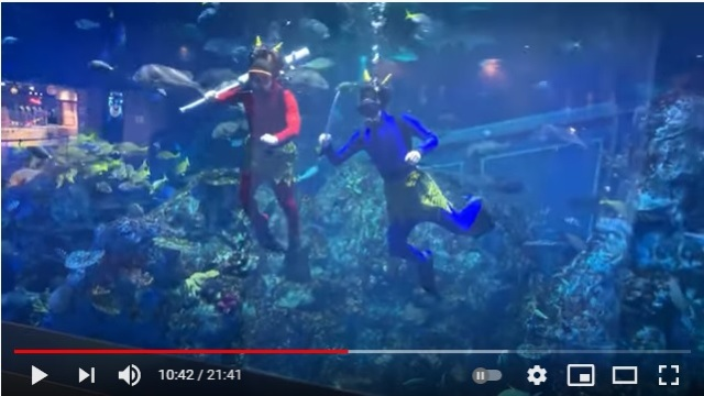 赤鬼&青鬼のダイバーが大水槽の中で魚やカメと戯れる…! 鳥羽水族館の節分イベントがまるで昔話のワンシーンのよう!?