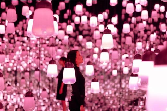 桜を表現した幻想的な「ランプの森」が「チームラボボーダレス」に 出現 / 春をテーマにした展示が楽しめるよ
