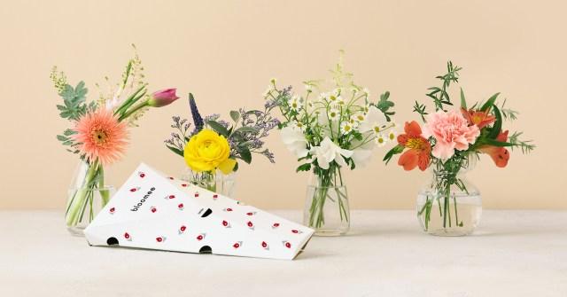 もっと「私」に花束を! 自分自身にお花でエールを贈る新サービス「じぶん応援花」 が素敵です