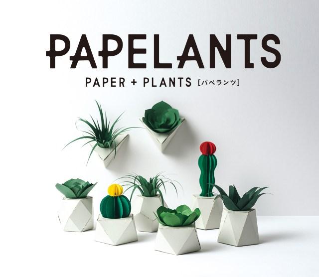 紙の観葉植物「パペランツ」で手軽に緑のある生活を♡ 自分で組み立てるから愛着もひとしおです