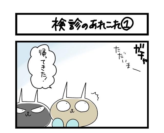 【夜の4コマ部屋】検診のあれこれ (1) / サチコと神ねこ様 第1560回 / wako先生