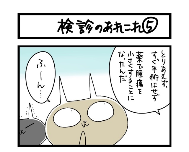 【夜の4コマ部屋】検診のあれこれ (5) / サチコと神ねこ様 第1564回 / wako先生