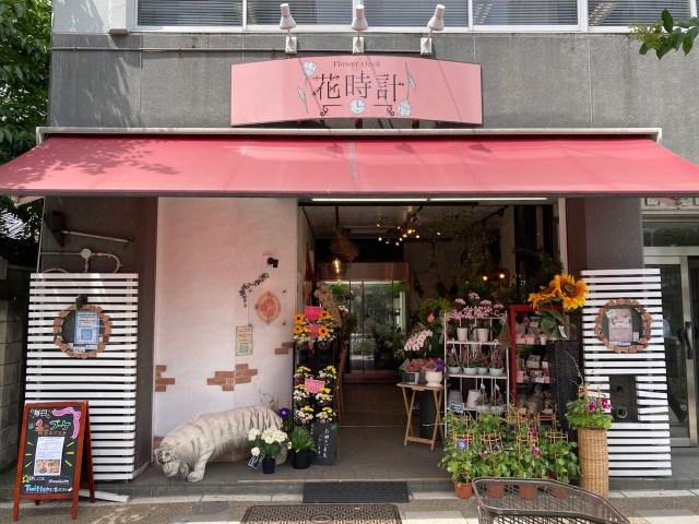 可愛いブーケがたった「1円」で買える!? 東上野のお花屋さんがツイッターのフォロワー限定で1円ブーケを販売中