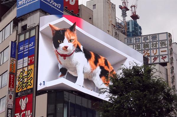 東京・新宿に現れた「巨大猫」の動く姿がド迫力…! ビルの上から庶民を見下ろす猫さまの様子をご覧ください