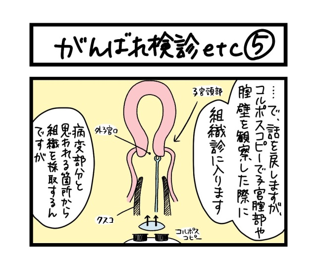 【夜の4コマ部屋】がんばれ検診etc (5)  / サチコと神ねこ様 第1584回 / wako先生