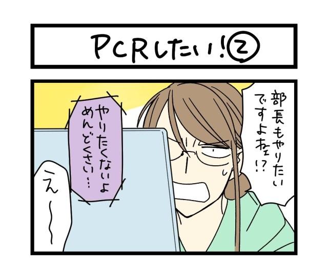 【夜の4コマ部屋】PCRしたい! (2)  / サチコと神ねこ様 第1600回 / wako先生