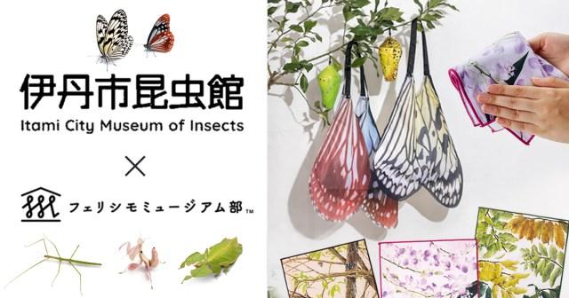 フェリシモから超リアルな「昆虫アイテム」が登場! サナギから蝶になるエコバッグやミノムシ型ペットボトルカバーなど