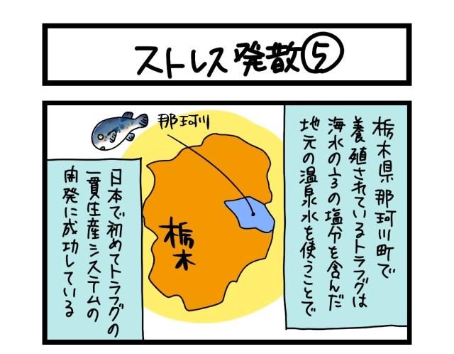 【夜の4コマ部屋】ストレス発散(5)  / サチコと神ねこ様 第1608回 / wako先生