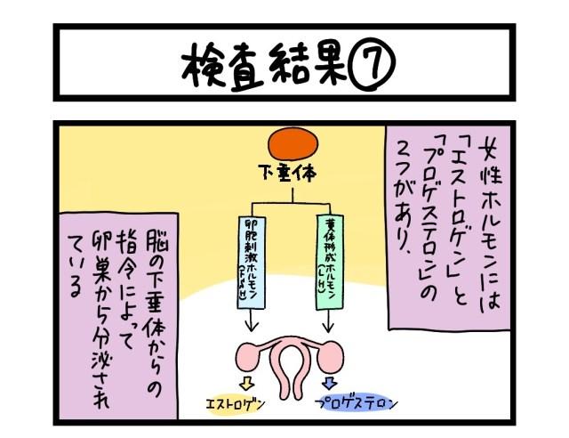【夜の4コマ部屋】検査結果 (7)  / サチコと神ねこ様 第1616回 / wako先生
