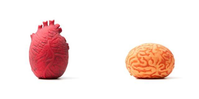 握ったり揉んだりできる「心臓」と「脳みそ」だと!? 妙にリアルなフライング タイガー コペンハーゲンの新商品が躊躇なしだよ